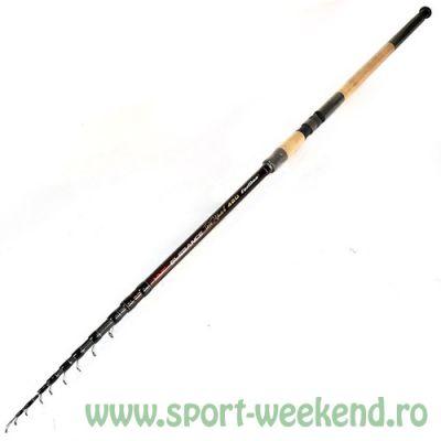 Formax - Lanseta Elegance Telematch 4,20m 5-25 gr
